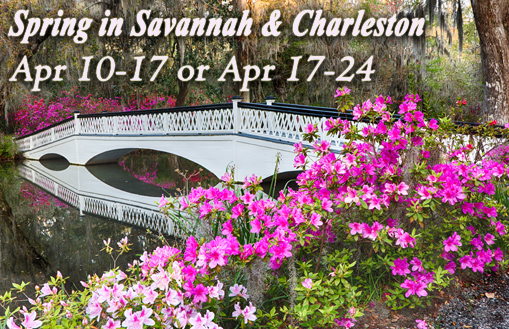 Spring in Savannah and Charleston